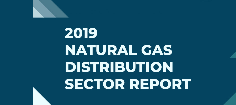 2019 NATURAL GAS DISTRIBUTION SECTOR REPORT