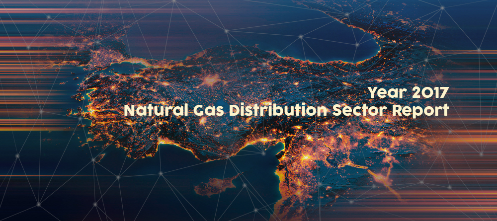 Natural Gas Distribution Sector Report